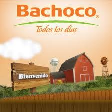 bachoco