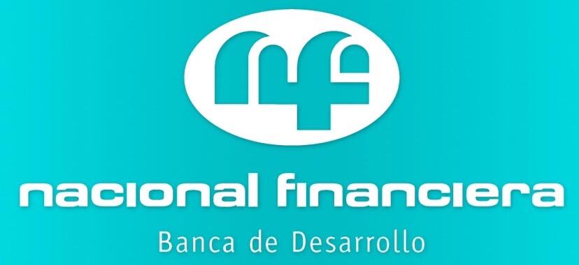 nacional financiera slide